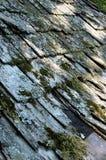 растрепанная крыша Стоковые Изображения