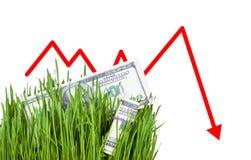 Растущие деньги в траве Стоковые Фотографии RF