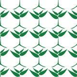 Растущие зеленые растения, безшовная картина Стоковые Изображения