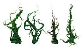 растущие лозы завода 3D Стоковая Фотография
