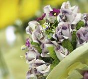 Растущие розы денег Изображение концепции, день поздравлению стоковые изображения rf