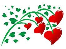 Растущие сердца стоковые фото