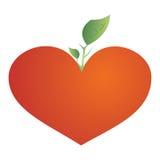 растущий вал красного цвета сердца Стоковое Изображение