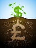 Растущий знак доллара как завод с листьями и фунт любят корни иллюстрация штока