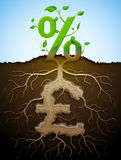 Растущий знак процентов как завод с листьями и фунт подписывают как корень бесплатная иллюстрация