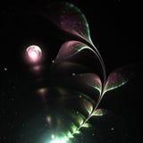 Растущий цветок фрактали Стоковое Изображение