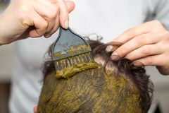 Расцветка волос Стоковая Фотография RF