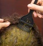 Расцветка волос Стоковые Изображения