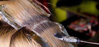 Расцветка волос Стоковое Изображение