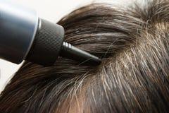 Расцветка волос Стоковые Фотографии RF