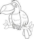 Расцветка с toucan Стоковое Изображение