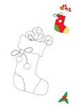 Расцветка чулка рождества Стоковое Фото
