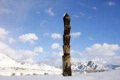 Расцветка Altai Стоковое Изображение RF
