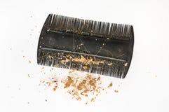 Расчесывайте щетку с потерянными волосами и перхотью - концепцией плешивости стоковое фото