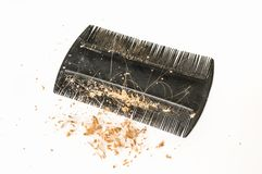 Расчесывайте щетку с потерянными волосами и перхотью - концепцией плешивости стоковые изображения