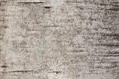 Расшива бледного цвета Стоковое Фото