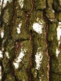 Расшива вала Стоковая Фотография RF