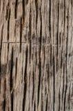 Расшива Стоковая Фотография RF