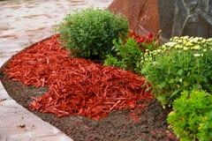 Расшива mulch красная декоративная Стоковое Изображение