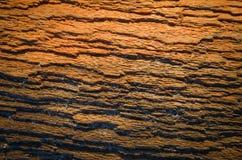 Расшива tre сосны Стоковая Фотография