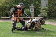 ратники самураев стоковое изображение rf