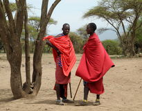 Ратники Masai стоковые изображения