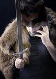 Ратник Cimmerian.barbarian Стоковые Изображения