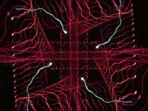 Радиоволна Стоковые Фотографии RF