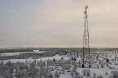 Радиосвязи возвышаются и сеть телекоммуникаций спутниковой антенна-тарелки на небе вечера с лесом захода солнца и зимы северным Стоковое Изображение RF