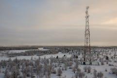 Радиосвязи возвышаются и сеть телекоммуникаций спутниковой антенна-тарелки на небе вечера с лесом захода солнца и зимы северным Стоковая Фотография RF