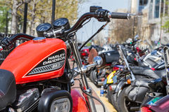 Ралли мотоцикла стоковые изображения