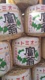 Ради несется Киото Стоковые Изображения