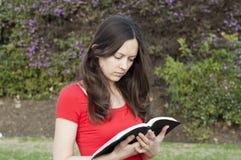 Радостное чтение слова бога стоковое изображение rf