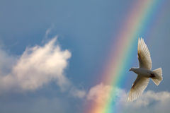 Радуга в небе стоковые изображения