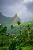 Радуга на ландшафте джунглей и гор острова Moorea Стоковая Фотография