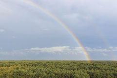 Радуга на заходе солнца над лесом в природном парке вызвала Lommeles Сахару в Бельгии Стоковое Изображение RF
