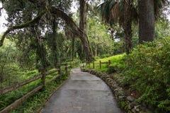 Радуга скачет парк штата, Флорида, США Стоковые Фото