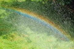 Радуга с дождем весной Стоковое фото RF