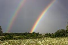 2 радуги над полем Стоковое фото RF