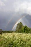 2 радуги над полем Стоковые Фото