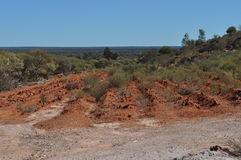 Реабилитация regrowth места шахты реабилитирует Стоковое Фото