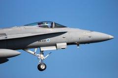 Реактивный истребитель шершня McDonnell Douglas F/A-18 Стоковые Изображения RF