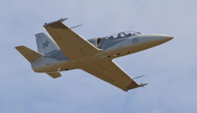 Реактивный истребитель года сбора винограда L-39 Albatros Стоковое Фото