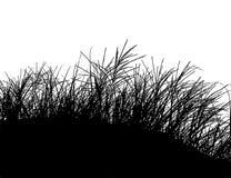 Реалистическая иллюстрация вектора силуэта травы EPS10 Стоковое Изображение RF