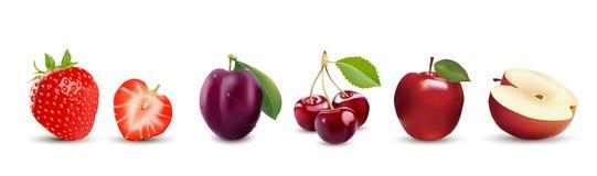 реалистические значки плодоовощ Клубника, Яблоко, слива и вишня иллюстрация вектора