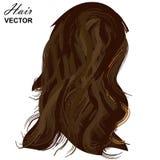 Реалистический шаблон волос женщины также вектор иллюстрации притяжки corel бесплатная иллюстрация