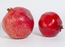 Реальная вениса и вениса гранатового дерева, на белой предпосылке, конец-u Стоковые Изображения RF