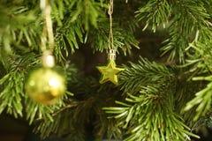 Реальная ель рождественской елки с зеленой звездой рождества стоковое фото