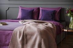 Реальное фото современного интерьера спальни гостиницы с розовым одеялом дальше стоковая фотография