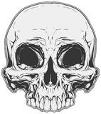 Реалистическая белая и серая человеческая татуировка черепа Стоковое Изображение RF